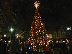 Ellijay's downtown Christmas Tree