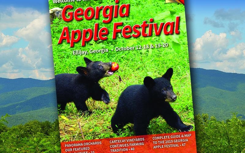 2019 Apple Festival Magazine