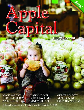 Enjoy our 2020 Apple Capital magazine